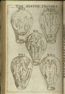 eucharius-roesslin-1545.jpg