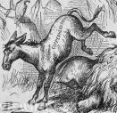 nast-donkey.jpg