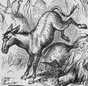nast-donkey