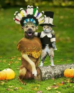 thanksgiving-dogindiancatpilgrim