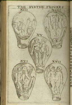 Eucharius Roesslin 1545